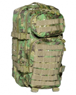 US Assault pack 20L  W/L-Arid